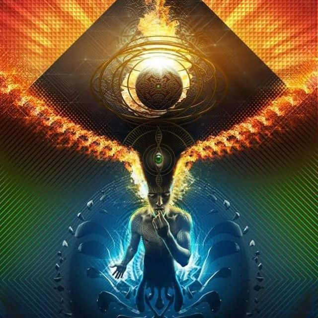 What universities have done any research on the concept of reality and/or DMT (Dimethyltryptamine)?