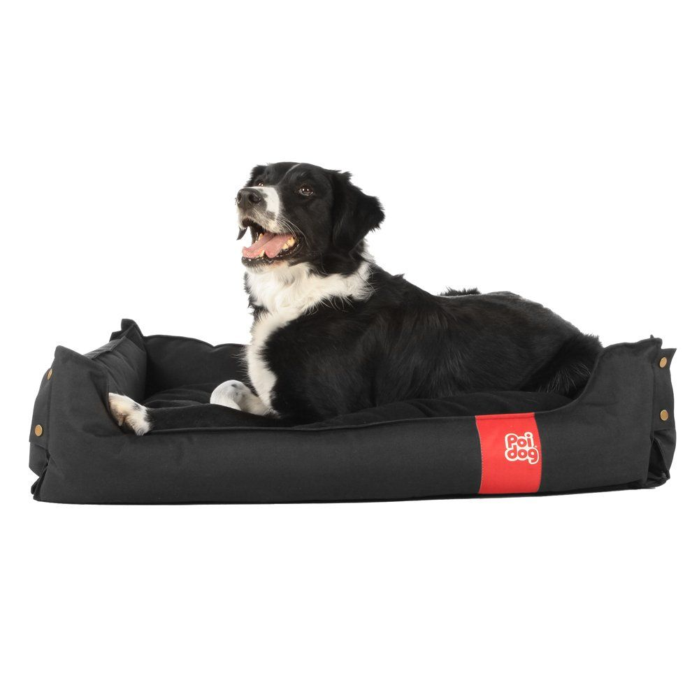 "£28 Poi Dog® Collapsible LARGE Dog Bed - BLACK Dog Beds for Home or Travel (33"") - Dog Beds for Large Dogs"