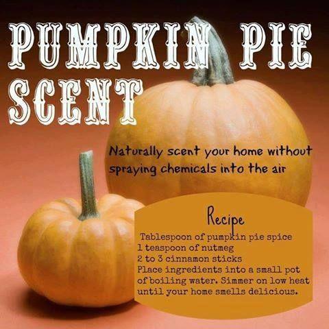 Pumpkin Pie Home Sent DIY......... #Health #Homemade #NoToxins #NoChemicals #AllNatural #DIY #GreenCleaning #HomeScent #PumpkinPieScent