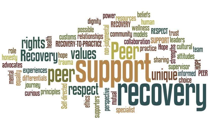 definition  u2013 peer supporter