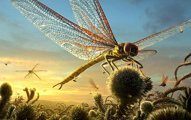 Resultado de imagen para dragonfly dinosaur