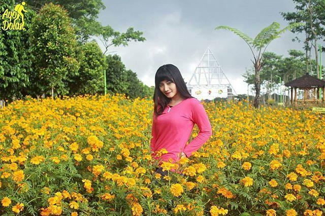 Taman Bunga Pandaan