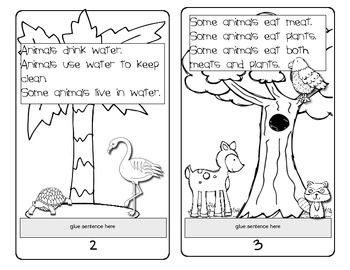 What Do Animals Need? Early Informational Text Reader