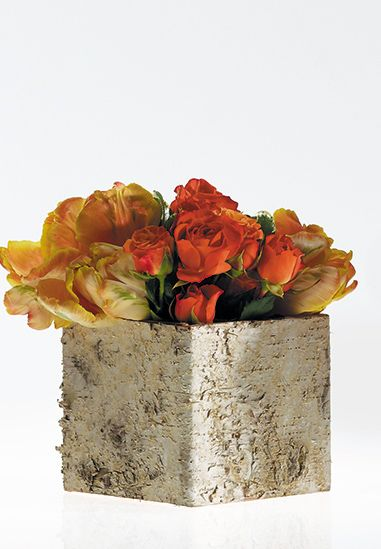 "Birch Square Pots Set to Two Pots  4.75""/5.5"""