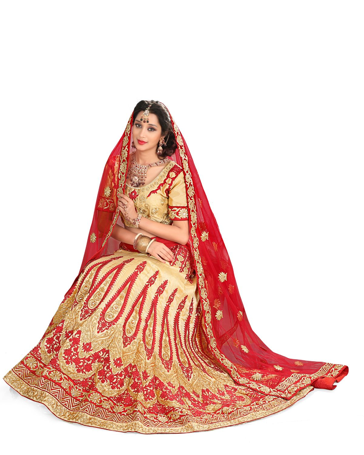 7813e954d6b7ab This is a wedding party wear bollywood style designer lehenga choli made  from net and velvet