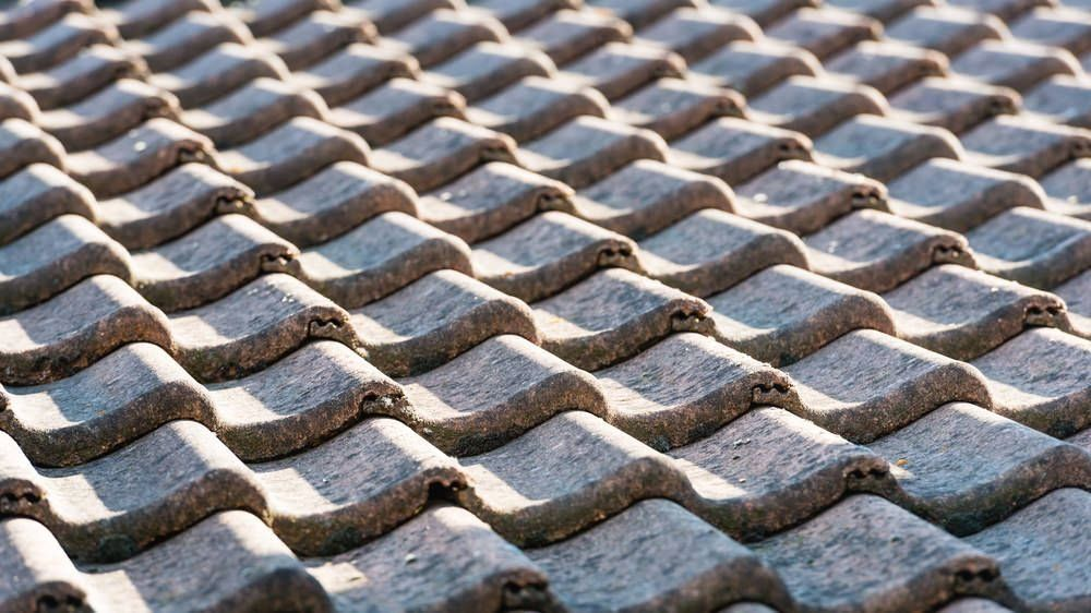 19 Different Types Of Roof Shingles Pros Cons Costs 1000 In 2020 Roof Shingles Types Of Roof Shingles Best Roof Shingles