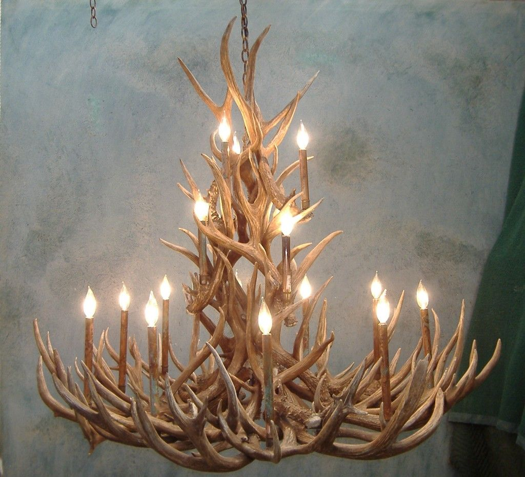 Antler chandelier spruce mule deer antler chandelier dream antler chandelier spruce mule deer antler chandelier arubaitofo Images