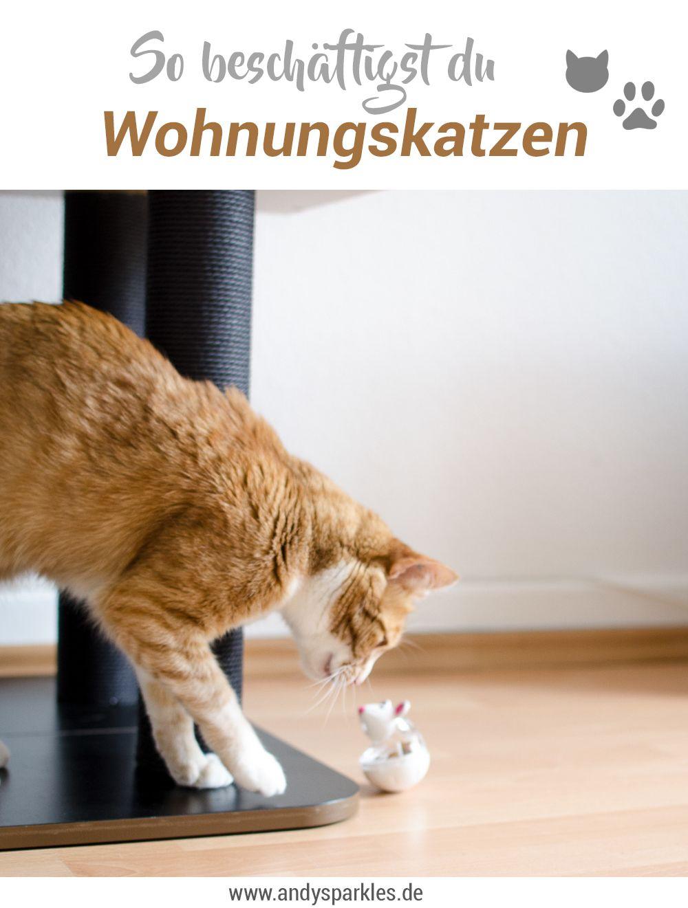 10 tipps f r wohnungskatzen der gute rat pinterest wohnungskatzen katzen hacks und katzen. Black Bedroom Furniture Sets. Home Design Ideas