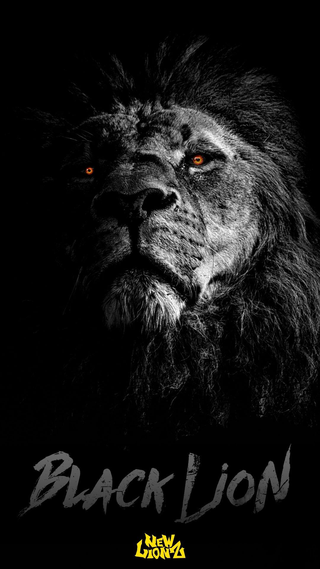 Black Lion Newlionz Iphone Android Wallpaper In 2021 Lion Artwork Lion Wallpaper Lion Pictures