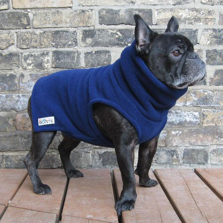 Boys Turtleneck Navy Blue French Bulldog Pug Fleece Sweater