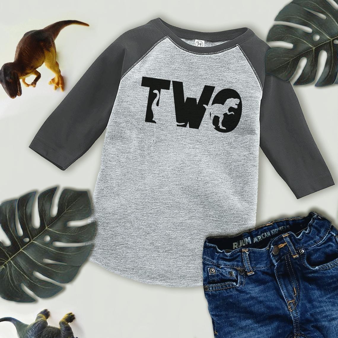 Dinosaur Birthday Shirt Boys Second Birthday Dino Tshirt