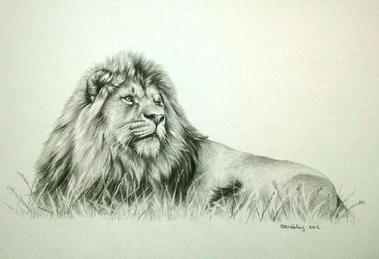 Lion sarah stribbling original pencil drawing