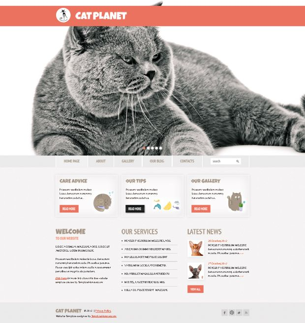 Free cherry wordpress theme for cat site httpwww free cherry wordpress theme for cat site httptemplatemonster pronofoot35fo Choice Image