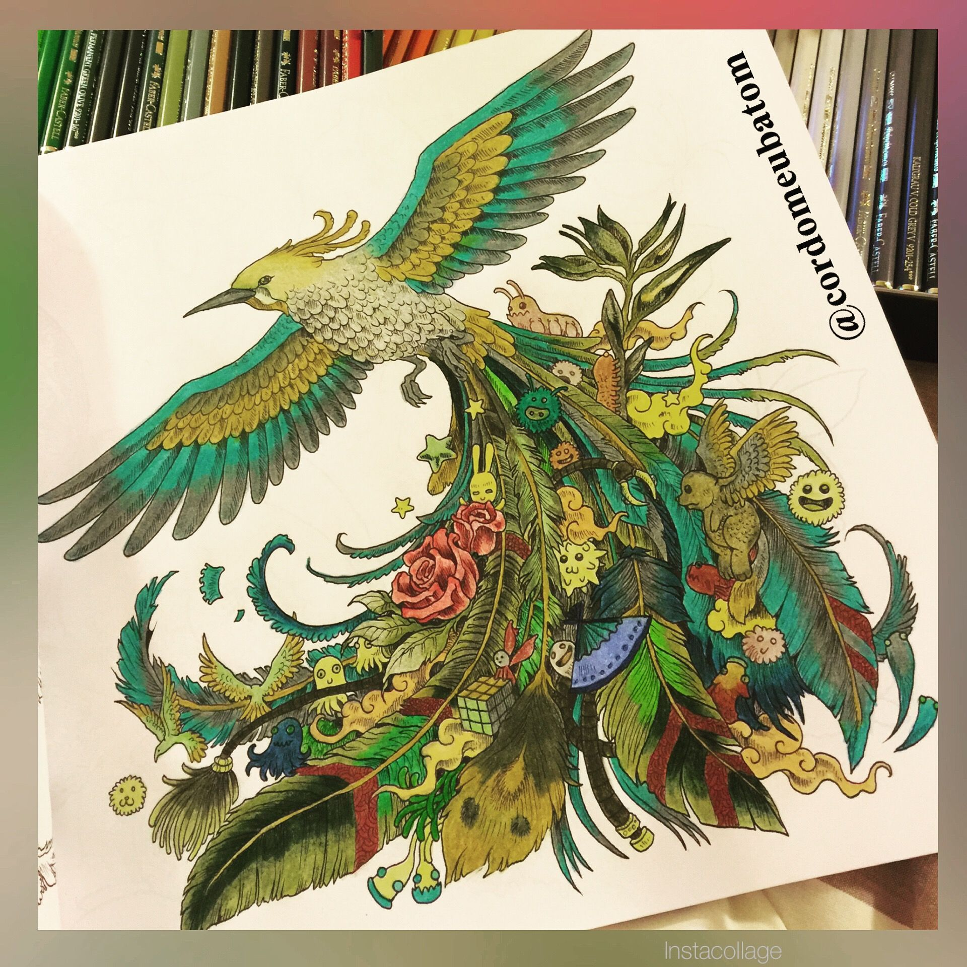 Adult Coloring Books Pintura Vintage Pages