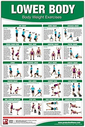 bodyweight training poster/chart  lower body body weight