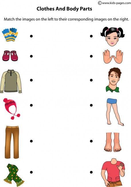 math worksheet : 1000 ideas about body parts on pinterest  spanish vocabulary  : Body Parts Worksheet For Kindergarten
