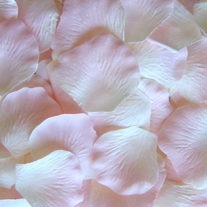 """Loose silk rose petals in a beautiful ivory with romantic light pink highlight accents. 100 petals per bag measure 1.75-2.25"""" in diameter each. Perfect for scattering on table tops or to be used for f"""