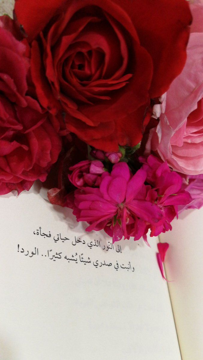 17 Twitter Love Quotes Wallpaper Beautiful Quran Quotes Love Words