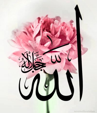 Allah Calligraphy On Rose Photoالله جل جلالهallah The