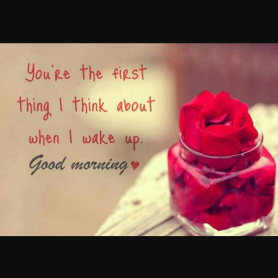 Good Morning My Love Quotes For Him Pinprincess Yaz On Quotes  Pinterest
