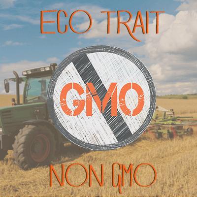 404 Not Found Gmo Gmo Labeling Gmos