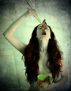 ...buterfly