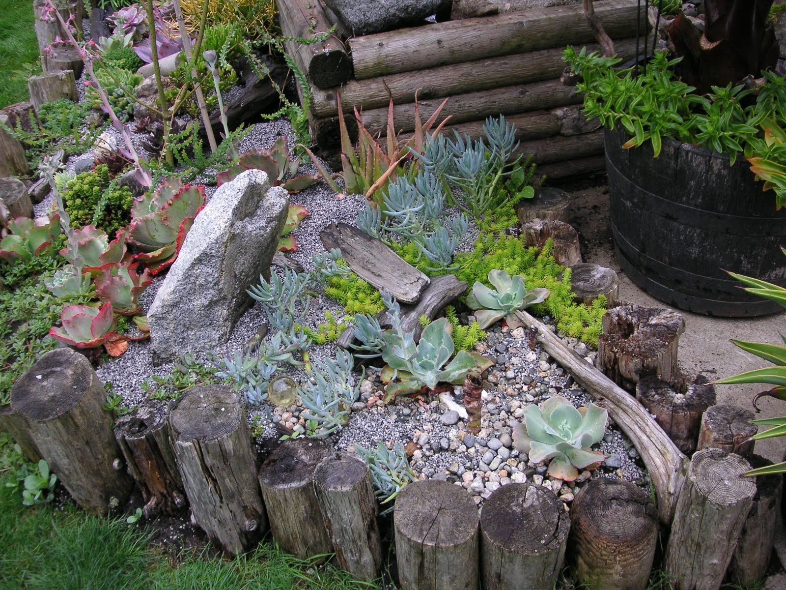 Backyard Designs Using Drifwood | ... Side Of The Same Garden. I Love