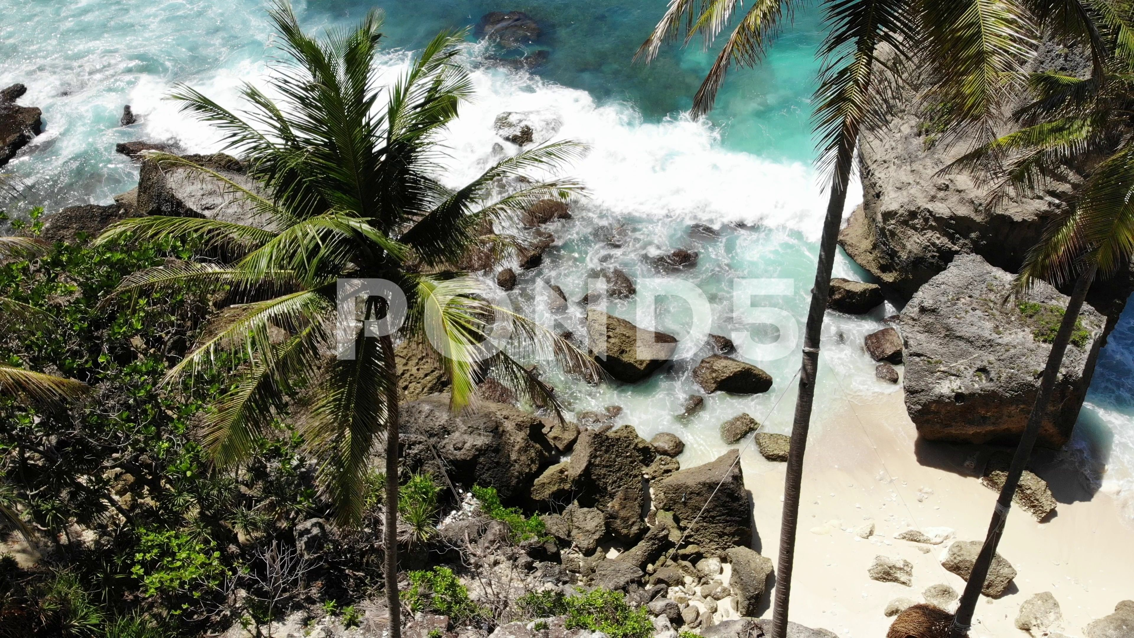 Aerial Drone View Of Tropical Beach Sea Rocks Turquoise Ocean And Palm Trees Stock Footage Ad Tropical Beach S Tropical Beach Aerial Drone Turquoise Ocean Drone aerial shot trees beach coast