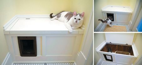 A cedar lined chest is a great place to conceal a litter box ...