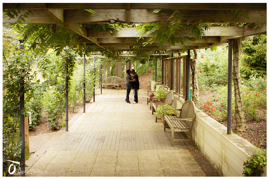 Digital Da Vinci S Photography Brookside Gardens