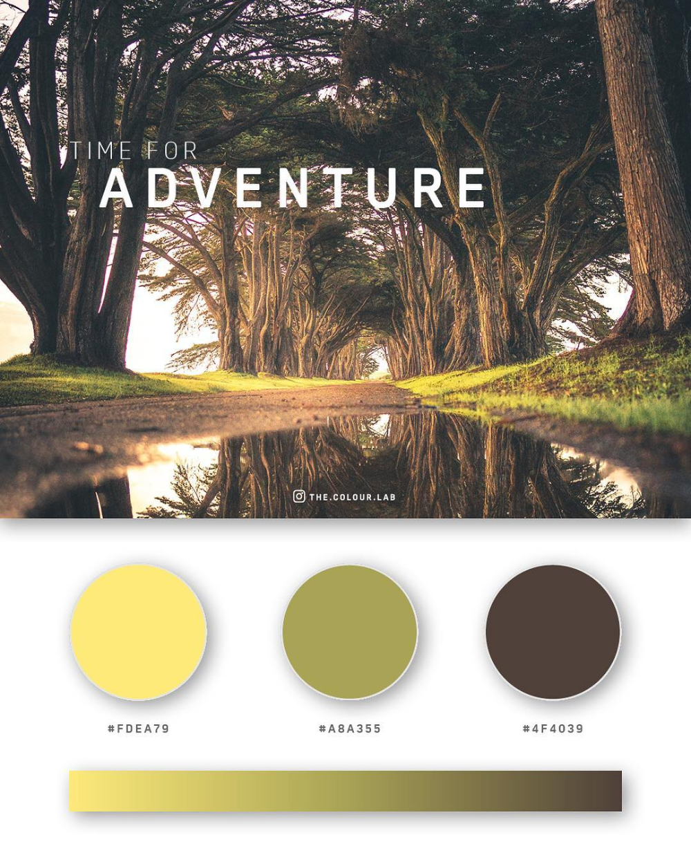 37 Beautiful Color Palettes For Your Next Design Project