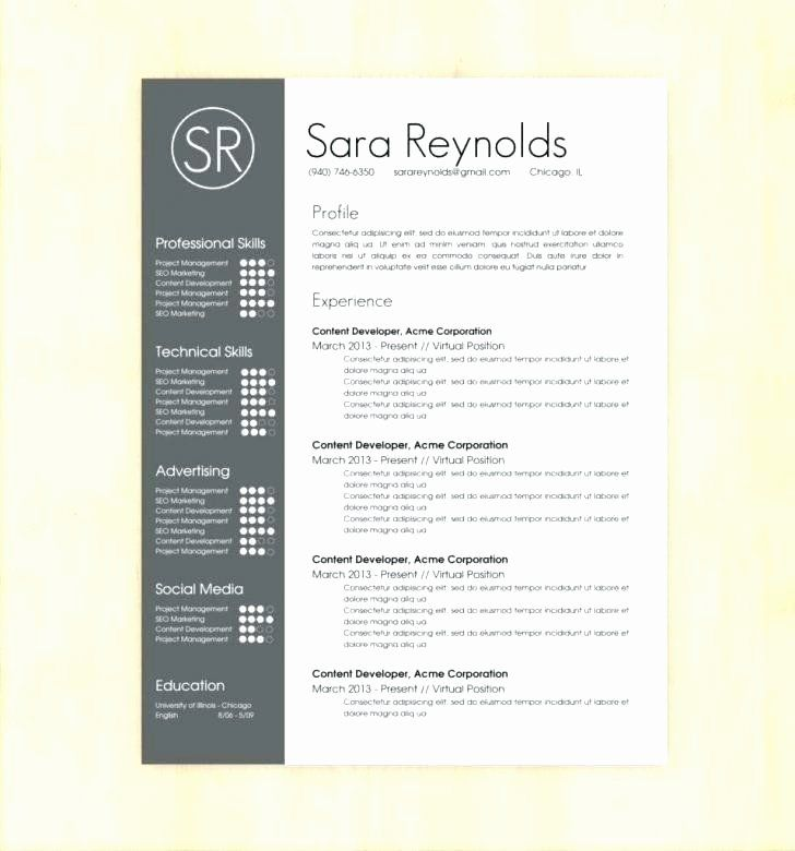 Executive resume template word elegant executive resume