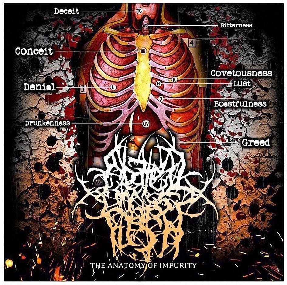THRASHDEATHGERA: Abated Mass Of Flesh - The Anatomy Of Impurity (EP ...
