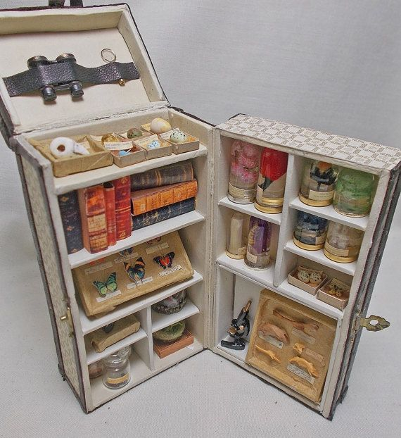 Hey, I found this really awesome Etsy listing at https://www.etsy.com/listing/495070600/dolls-house-miniature-darwin-museum