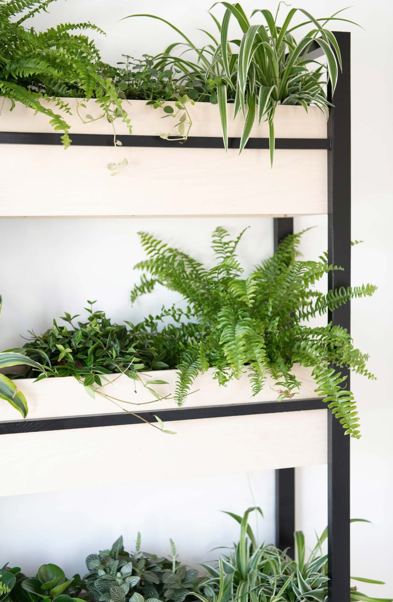 Diy Urban Jungle Pflanzenregal In 2020 Pflanzenregale Pflanzen Regal