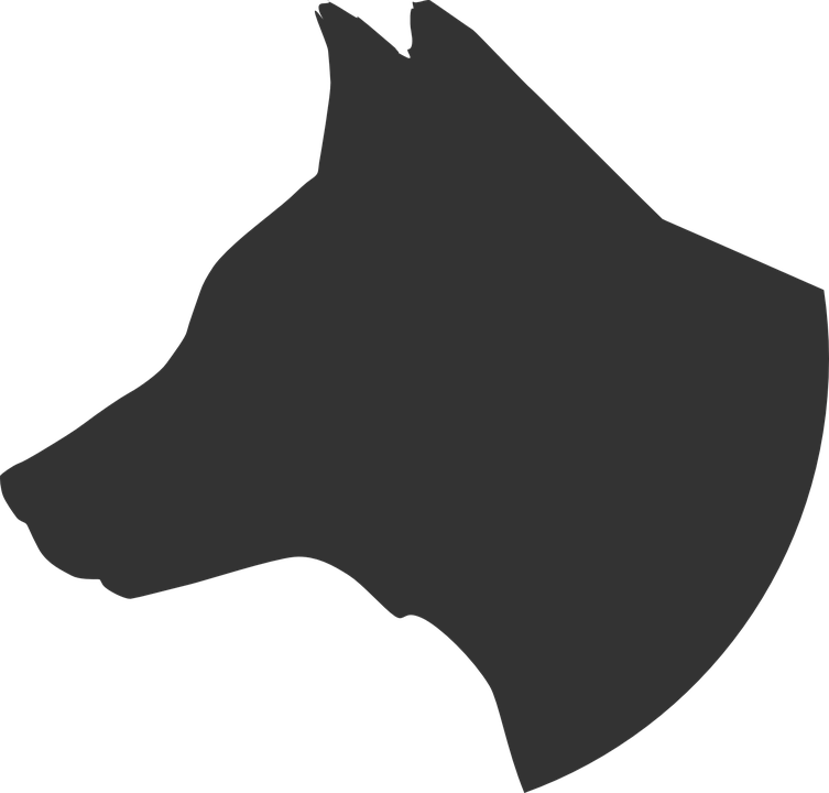 Bulldog Head Vector Illustration Bulldog Drawing Bulldog Art Bulldog Mascot