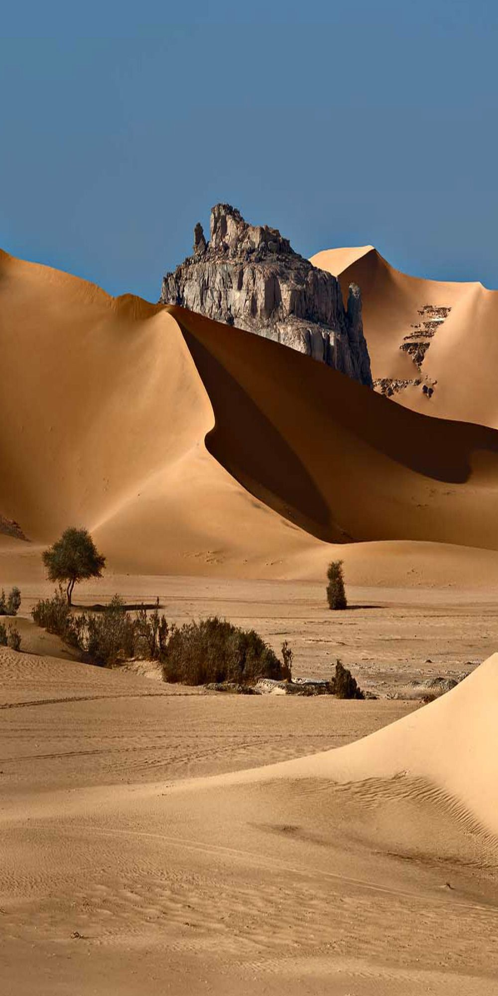 Fairy Desert Algeria Deserts Of The World Places To Visit Wonders Of The World
