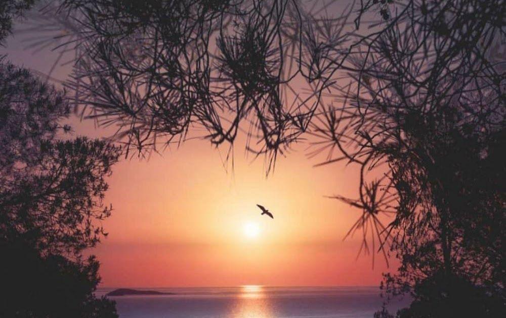 23 Background Keren Pemandangan Senja Lukisan Pemandangan Senja Di Pantai Cikimm Com Download Free Time Lapse Stock Di 2020 Pemandangan Matahari Terbenam Pantai