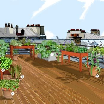 Potager urbain jardin potager jardineries truffaut for Jardin urbain permaculture