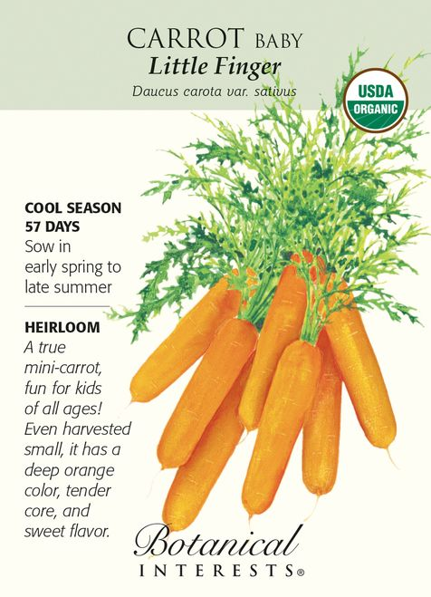 Little Finger Baby Carrot Seeds 1 G Certifield Organic With