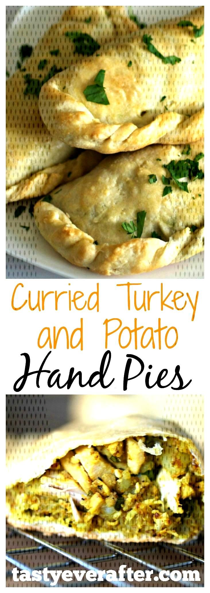 Easy Curried Turkey Hand Pies With Potatoes - Tasty Ever After - This is such a great way to use u