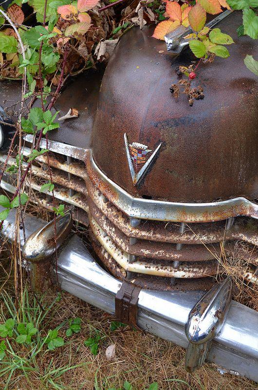 Rusting beauty | by paulbrannan