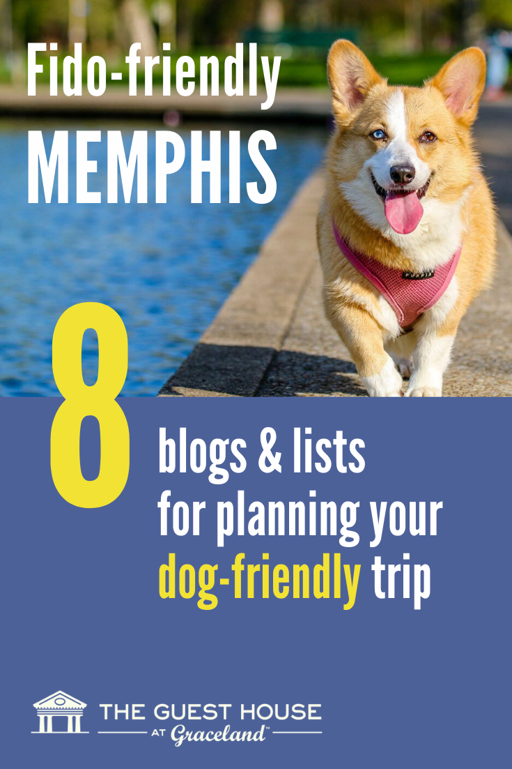 Fido Hounding You For A Pet Friendly Vacation Put Memphis On Your List Of Dog Friendly Cities To Visit In 2020 Dog Friendly Vacation Pet Friendly Vacations Dog Friends