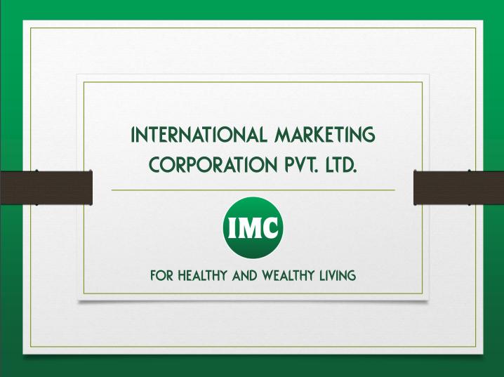 imc business plan pdf