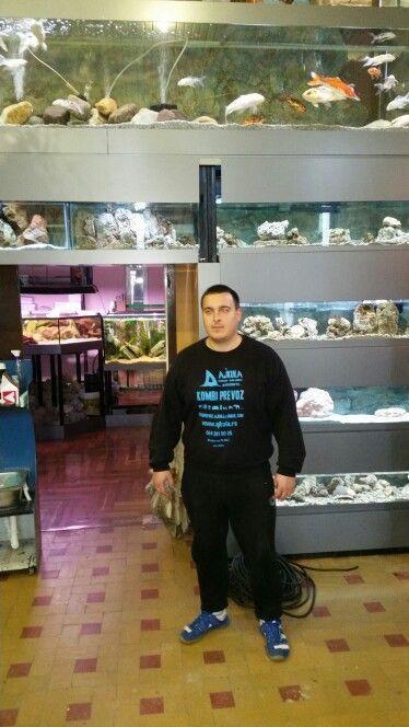 Selidbe akvarijuma različitih dimenzija