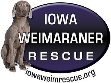 Another Amazing Breed Rescue Here In Iowa You Don T Have To Shop