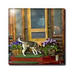 """Alaska, Bettles Lodge, North of the Arctic Circle - US02 JGI0124 - Jerry Ginsberg - 12 Inch Ceramic Tile by 3dRose. $22.99. Dimensions: 12"""" H x 12"""" W x 1/4"""" D. Construction grade. Floor installation not recommended.. Image applied to the top surface. Clean with mild detergent. High gloss finish. Alaska, Bettles Lodge, North of the Arctic Circle - US02 JGI0124 - Jerry Ginsberg Tile is great for a backsplash, countertop or as an accent. This commercial quality construction grade..."""
