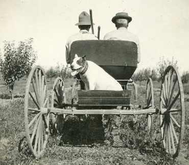 1908 colección C.H.