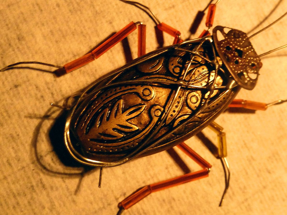 Cucaracha cockroach insect bug insect art craft for Bugs arts and crafts