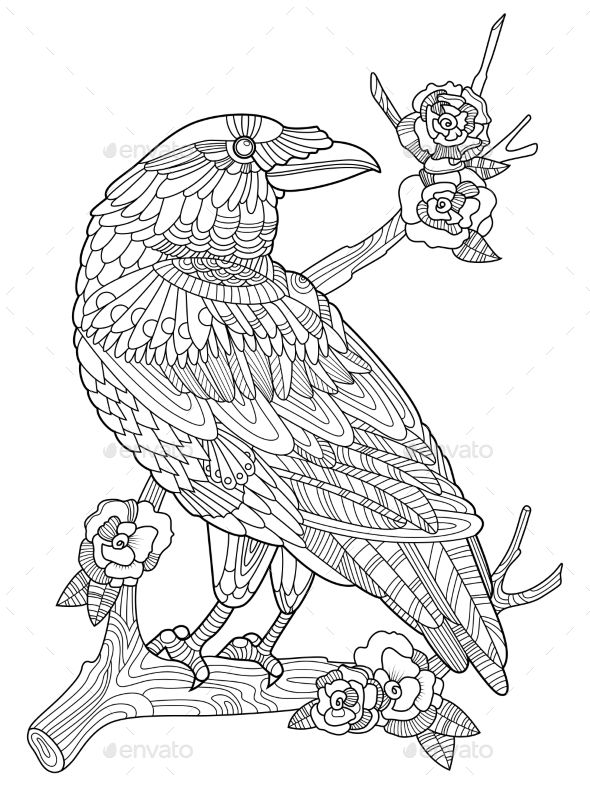 Crow Bird Coloring Book For Adults Vector Mandala Coloring Books